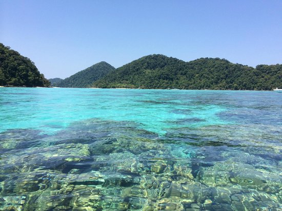 Mu Ko Surin National Park: น้ำใสๆ ฟ้าสวยๆ สามารถมองเห็นปะการังจากพื้นผิวน้ำ