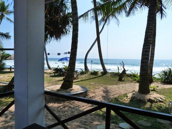 Pearly's Dream Cabanas : Blick vom Grundstück nach links den Strand entlang