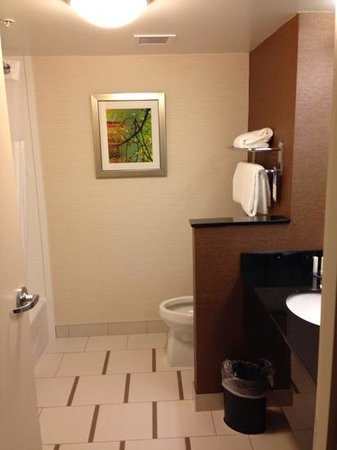 Fairfield Inn & Suites by Marriott Vernon : bathroom for king room