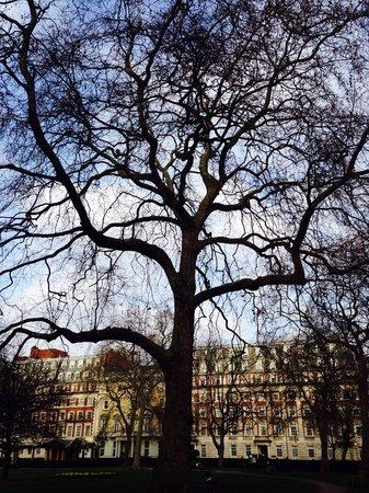 Millennium Hotel London Mayfair: Grosvenor Square
