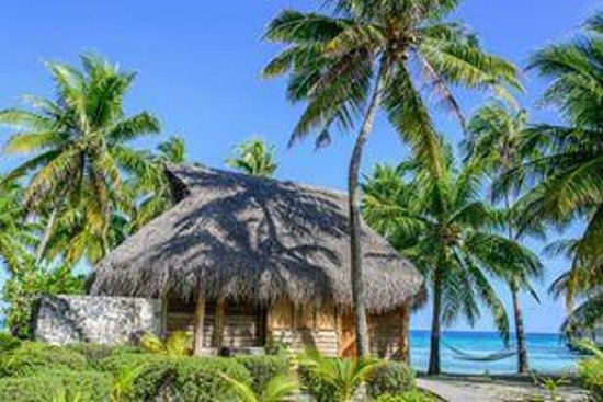 Tikehau Pearl Beach Resort: Beach bungalow