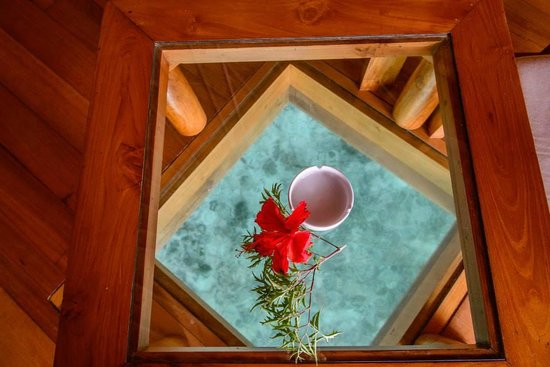 Tikehau Pearl Beach Resort: Glass in floor of overwater bungalow