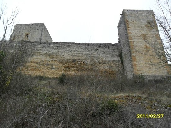 Chateau de Puivert: CHATEAU