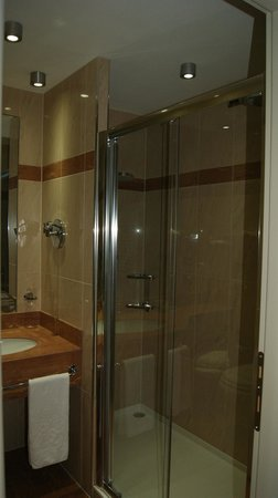 Winter Garden Hotel: душ
