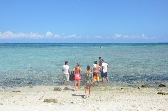 La Buena Vida Restaurant : Playa Akumal