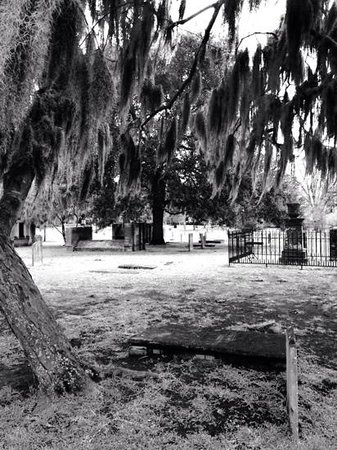 Colonial Park Cemetery: amazing!!!