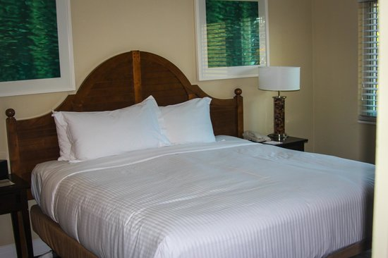 Edgewater Beach Hotel: Our 1 bedroom king