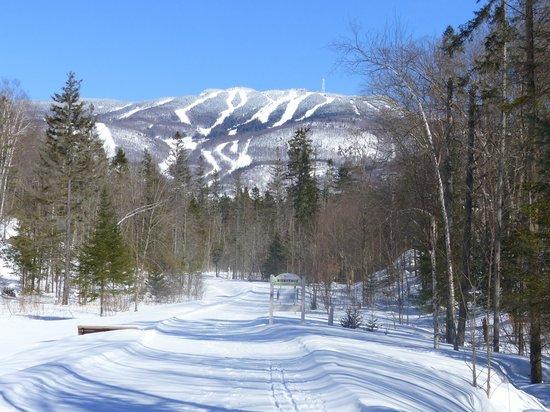 Gite le Roupillon B&B: piste de ski de fond derriére le Gite