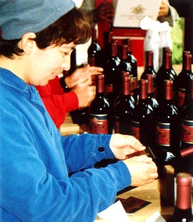 Conalbi Grinberg Casa Vinicola: Private Wine Tastings