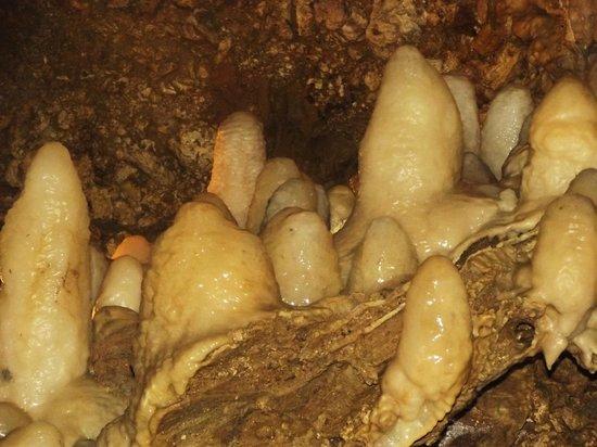 Harrison's Cave: stallagmiti