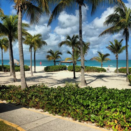 Club Med Turkoise, Turks & Caicos: The Best View