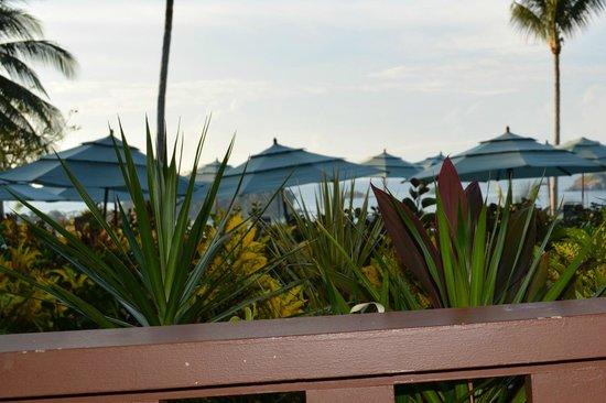 Hotel Costa Verde: View from ground floor room in building C