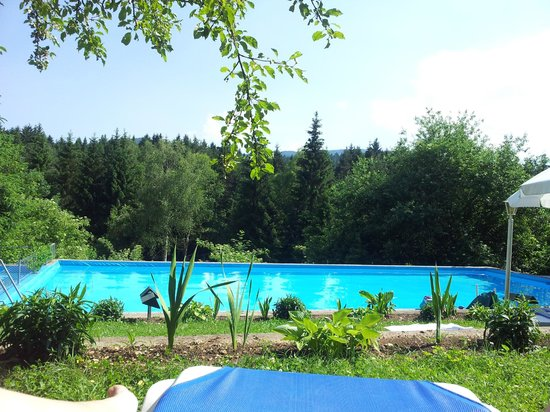 Landidyll Hotel Nudelbacher: Piscina