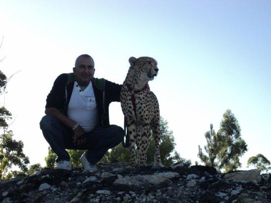 Tenikwa Wildlife Awareness Centre: breather on the morning walk in the sunrise