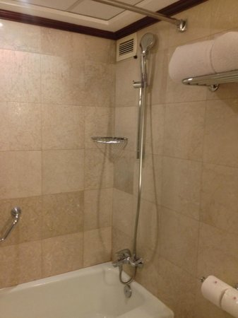 Amman Marriott Hotel : Tub