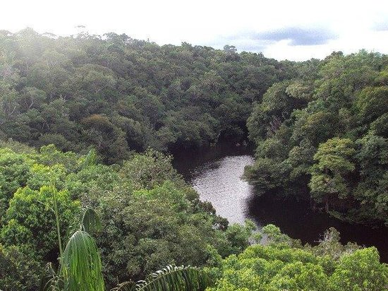 Anavilhanas Jungle Lodge: Anavilhanas