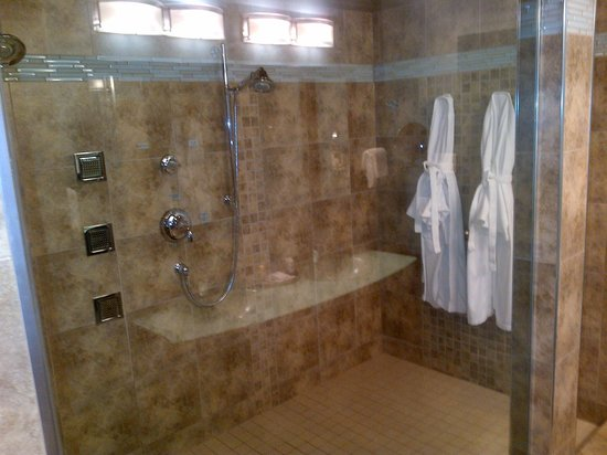 Best Western Plus Norwester Hotel & Conference Centre: full shower