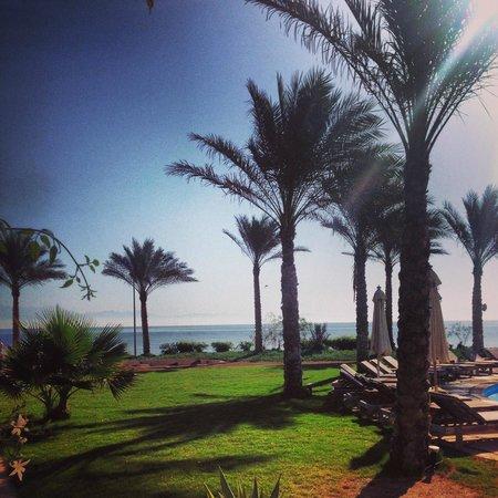 Dahab Paradise: Pool and Beach