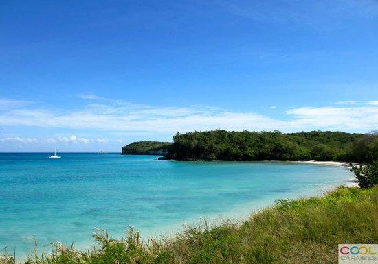 Cool Caraïbes : Anse Canot à Marie-Galante, lieu de mouillage du TIP TOP TWO