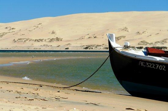 Union des Bateliers Arcachonnais : Dune du Pilat