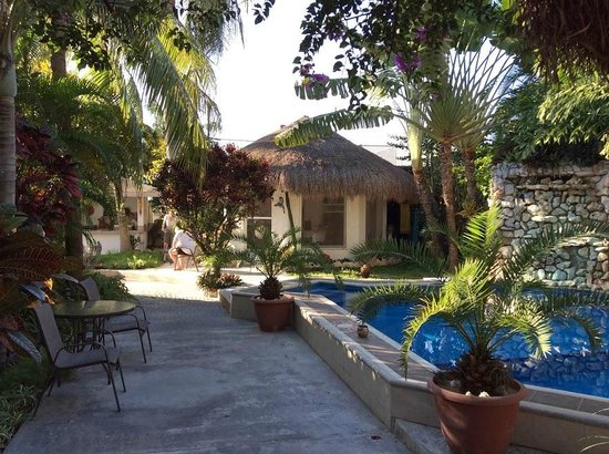 Baldwin's Guest House Cozumel: Swimming pool from the entrance area