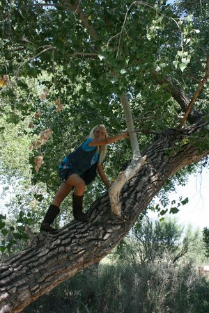 San Pedro Riparian National Conservation Area : Great for tree climbing