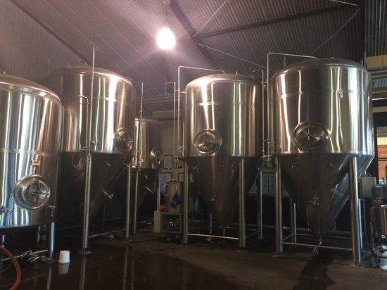 Global Village Backpackers: Brewery near hotel