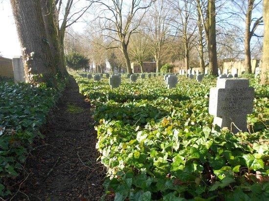 Deutscher Soldatenfriedhof Haubourdin : Vers l'avant du cimetière