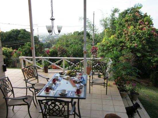 The Amazon Lodge B&B: Terrasse mit tollem Ausblick