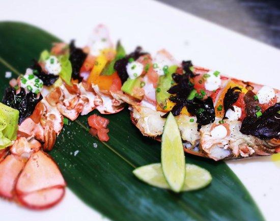 Opio Bar & Restaurant : Lobster Cocktail