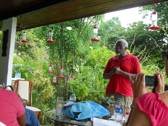 Yerette : on porch hummingbird feeders all around
