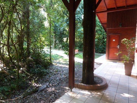 Yvy Hotel de Selva: Habitación