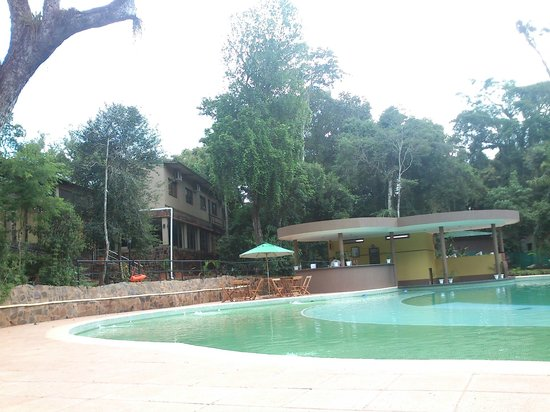Yvy Hotel de Selva: Pileta