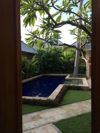The Lovina: A private pool of a villa behind us