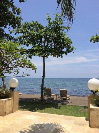 The Lovina: Overlooking the beach/sea