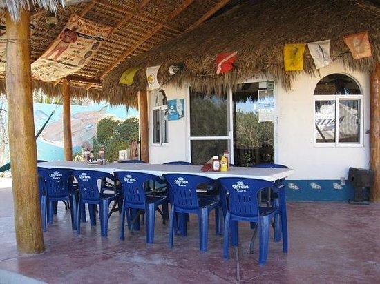 Palapas Ventana: The comfortable patio - relax with Jamaica tea or excellent Margarita!
