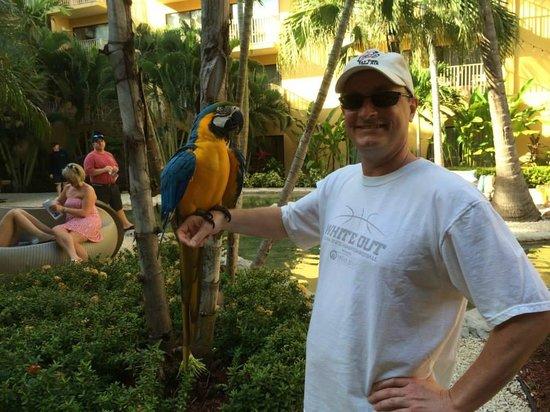 Grand Cayman Marriott Beach Resort: Grand Cayman