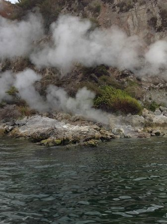 Taylor's Tours: thermal areas on lake
