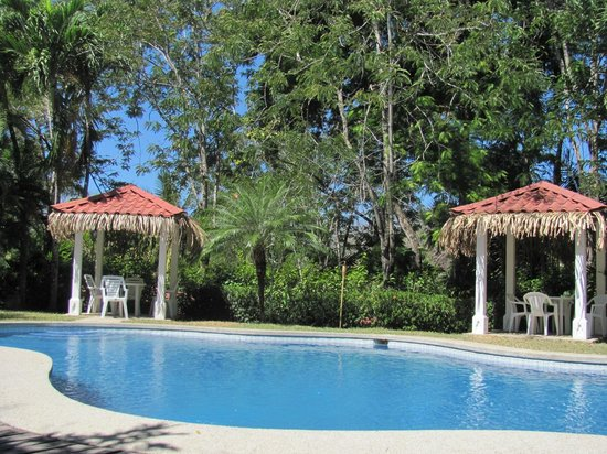 El Sueño Tropical: The pool was clean and refreshing