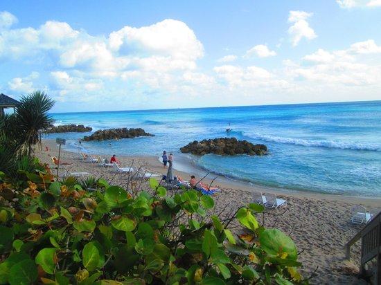 Embassy Suites by Hilton Deerfield Beach - Resort & Spa: Beach Area
