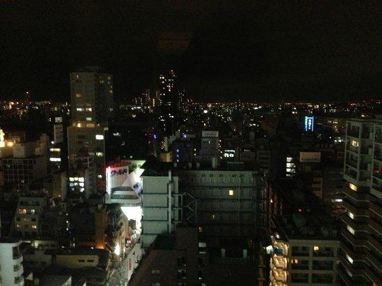 Hotel Nikko Osaka: 部屋からの眺め