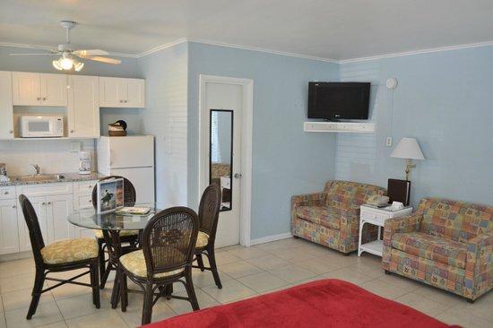 Silver Surf Gulf Beach Resort: Studio Aparto