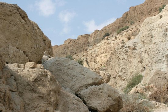 En Gedi Nature Reserve: Cliffs and caves above the valley
