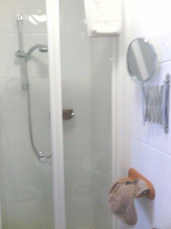 The Hampton Hotel: Nice clean shower