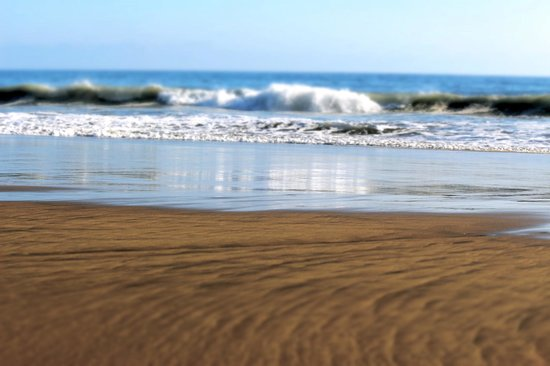 Playa Viva: beach
