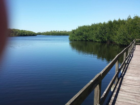 Alligator Creek Preserve: Another small lake on the three lake trail.