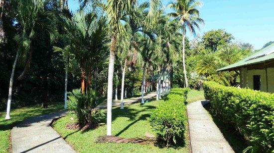 Villas Rio Mar: Wege zu den Villas