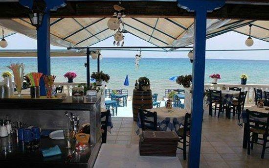 Ammoudi Fish Tavern: ammoudi