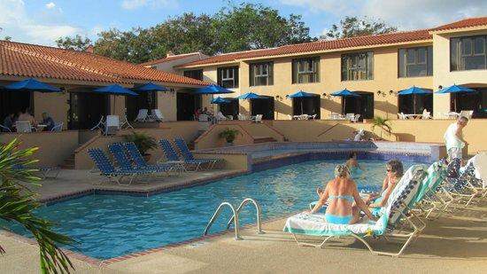 Park Royal Puerto Rico at Club Cala: Dolphin Pool