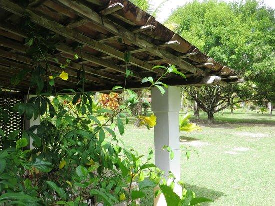 Villa Guaiamu Hotel: Bungalow